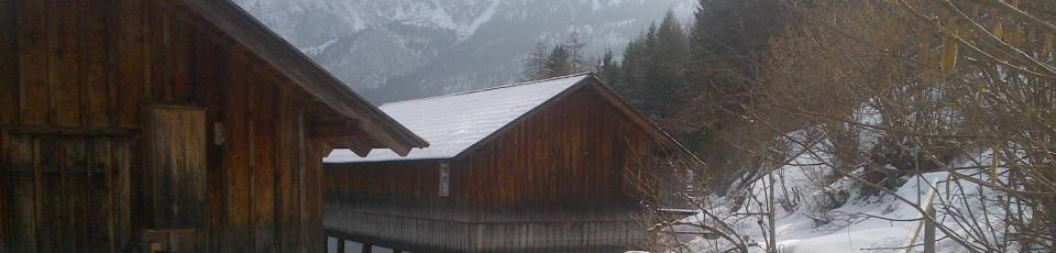 Bootshäuser am Altausseer See