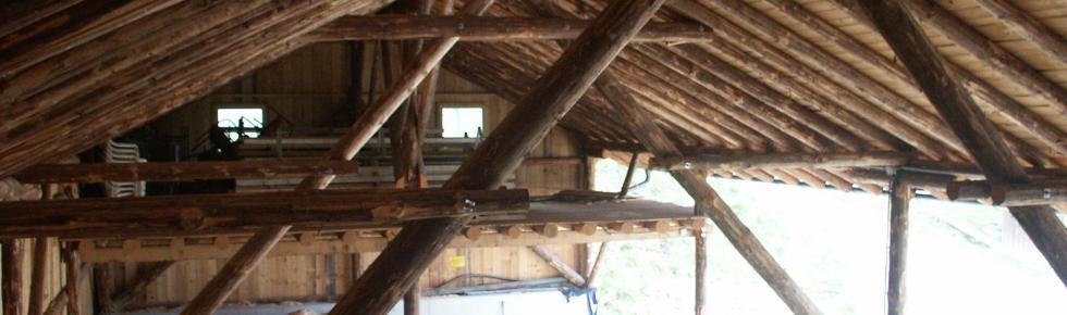 Neues Bauen in Holz